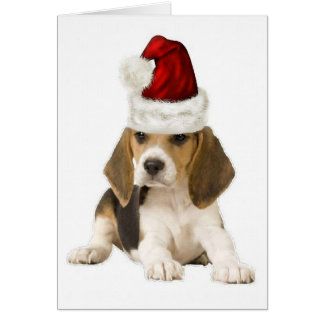 Ditzy Dogs~Original Notecard~Beagle~Christmas Card