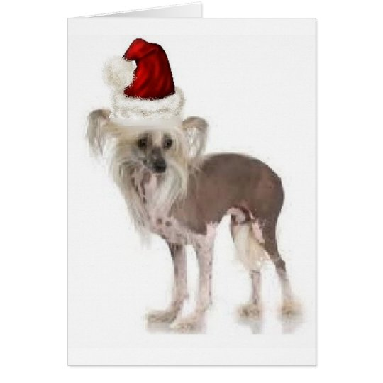 Ditzy Dogs~Original Notecard~Chinese Crested Card