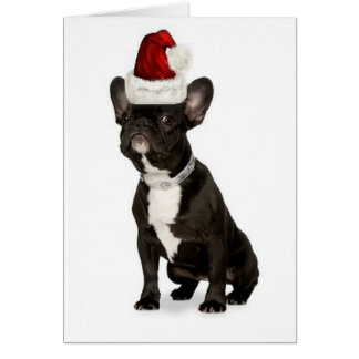 Ditzy Dogs~Original Notecard~French Bulldog Cards