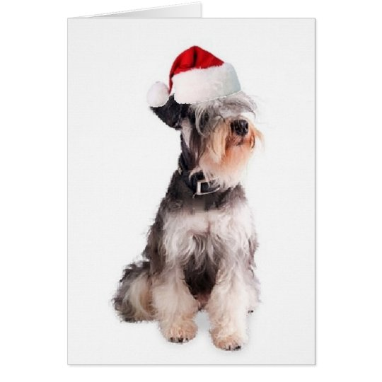 Ditzy Dogs~Original Notecard~Miniature Schnauzer Card