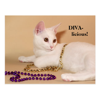 Divalicious Cat with Beads Post Card