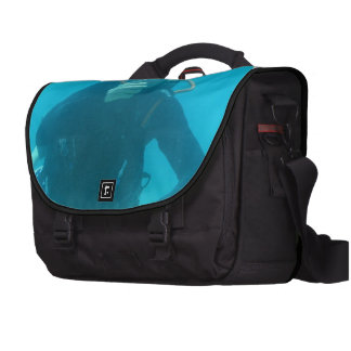 Diver Bags For Laptop