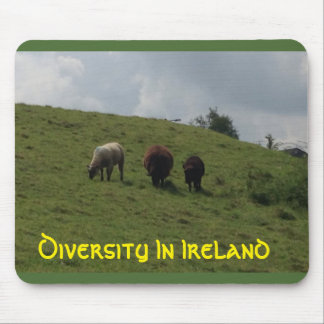 Diversity In Ireland Mousepad Irish