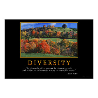 Diversity Posters