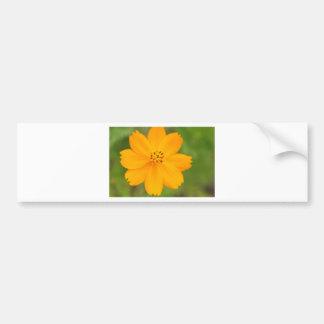 Diversos Flor amarela Bumper Sticker