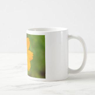 Diversos Flor amarela Mug