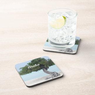 Divi Divi Tree Drink Coasters