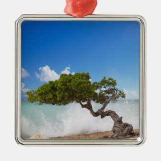 Divi Divi Tree, Eagle Beach, Aruba, Caribbean Christmas Ornament