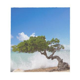 Divi Divi Tree, Eagle Beach, Aruba, Caribbean Notepads