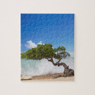 Divi Divi Tree, Eagle Beach, Aruba, Caribbean Puzzles