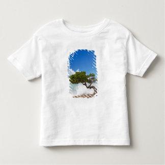Divi Divi Tree, Eagle Beach, Aruba, Caribbean Tshirt