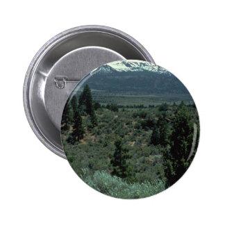 Dividing Lines Pinback Button