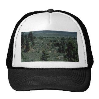 Dividing Lines Mesh Hats