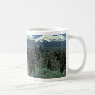 Dividing Lines Mugs