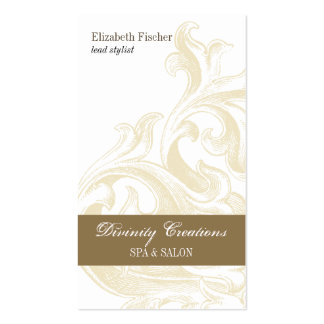 Divine Sconce Salon Appointment Pack Of Standard Business Cards