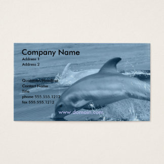Diving Dolphin Business Card