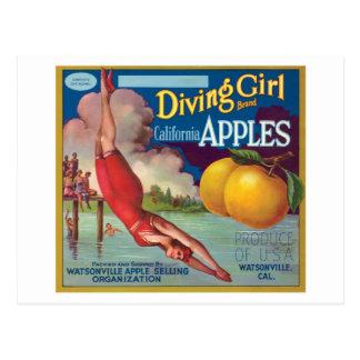 Diving Girl Vintage Apples Label Postcard