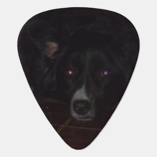 Dixie Belle in the Dark Guitar Pick