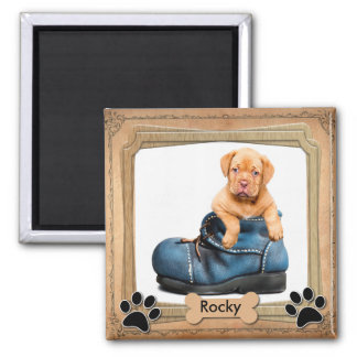 DIY Family Pet Photo Square Magnet