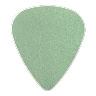 DIY Template REPLACE with your image photo Acetal Guitar Pick