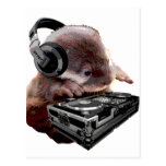 DJ None Otter Postcard
