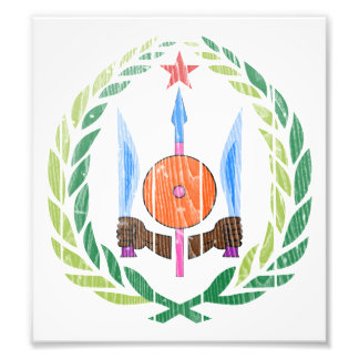 Djibouti Coat Of Arms Photographic Print