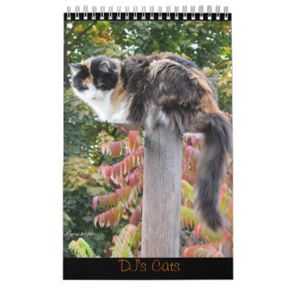 DJ's Cats One Page Wall Calendars