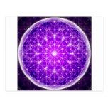 D'Light Full Mandala Postcard