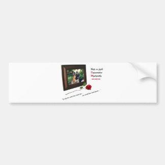 DM Memories Bumper Sticker