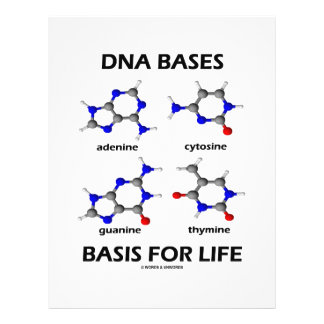 DNA Bases Basis For Life (Chemistry Molecules) Flyers