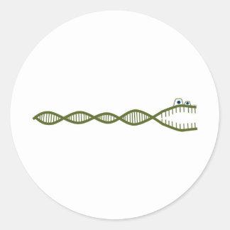 DNA CLASSIC ROUND STICKER