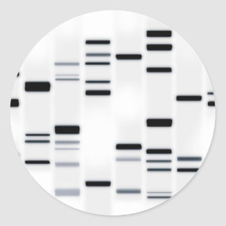 DNA Code Art Black on White Classic Round Sticker