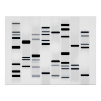 DNA Code Art Black on White Poster