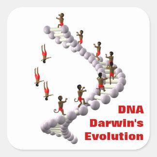 DNA Darwin's Evolution Square Sticker