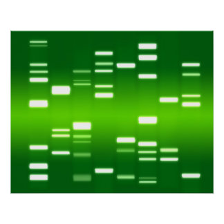 DNA Genetic Code Green Poster