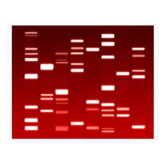 DNA Genetic Code Red Postcard
