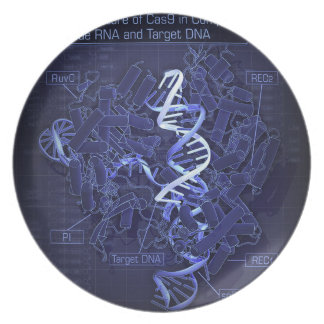 DNA in complex with Cas9 protein and guide RNA Plate