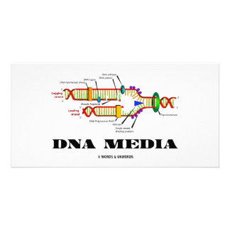 DNA Media Picture Card