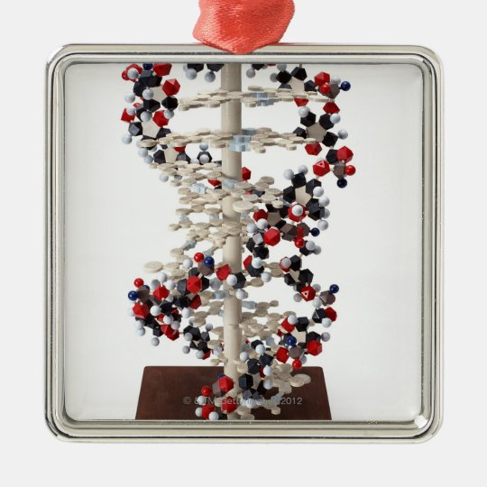 DNA Model Christmas Ornament