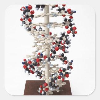 DNA Model Square Sticker