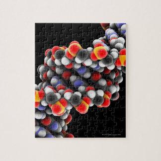DNA molecule. Molecular model of DNA Jigsaw Puzzle