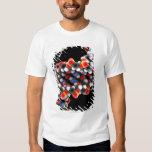 DNA molecule. Molecular model of DNA Shirt