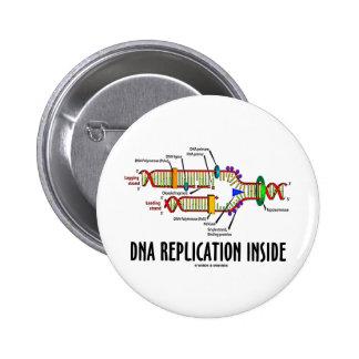 DNA Replication Inside DNA Attitude Button