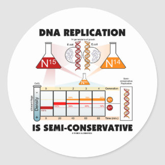 DNA Replication Is Semi-Conservative Round Sticker