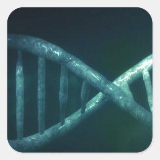 DNA SQUARE STICKER