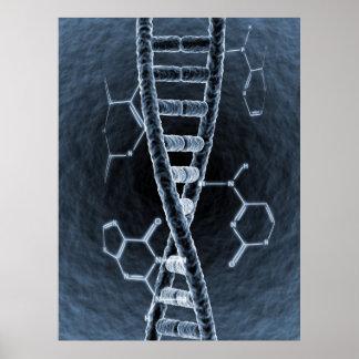DNA strand Poster