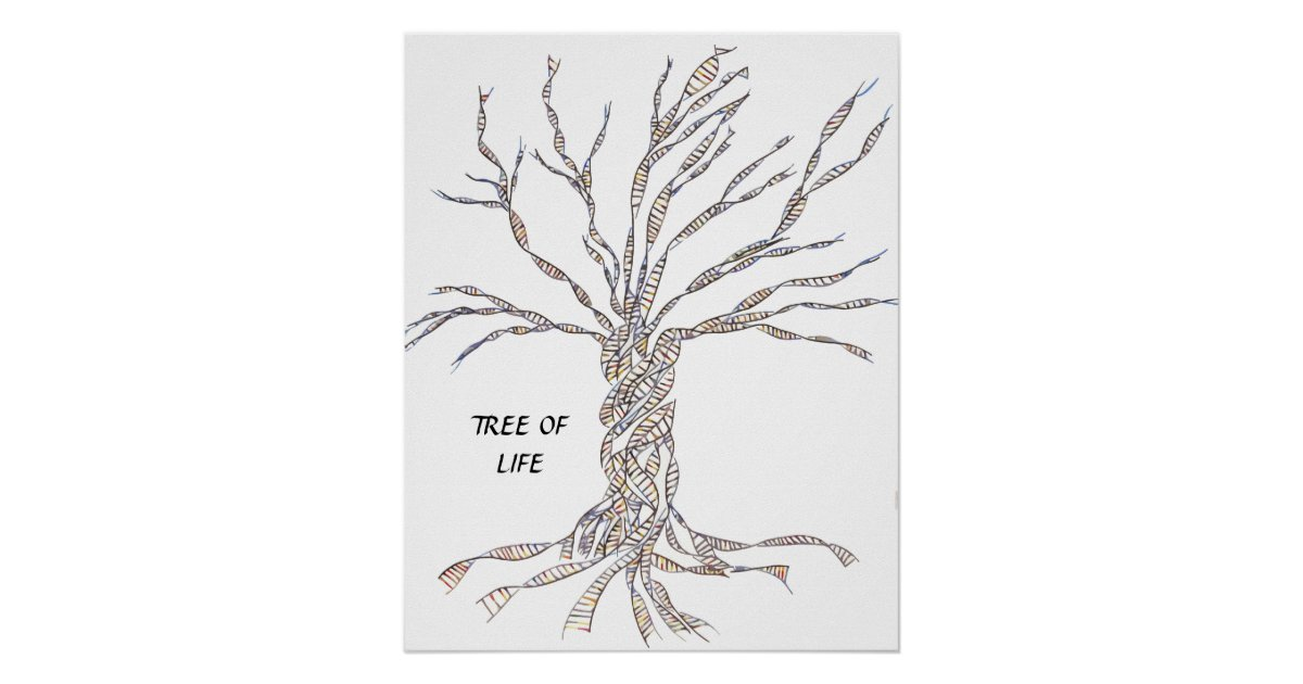 Dna Tree Or Tree Of Life Poster Blue Zazzle Co Uk