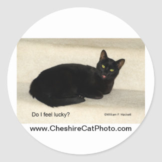 Do I feel lucky Black CAt California Products Round Stickers