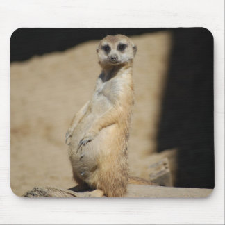 Do I look fat? Mouse Mat