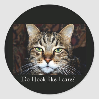 Do I look like I care? Round Sticker